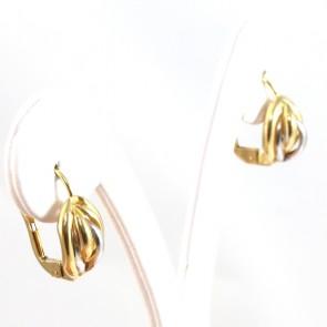 Orecchini pendenti corti  oro bicolore - 2.5 gr; 1.7 cm